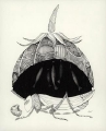 Ekosystem_1  (15x21 cm, rysunek tuszem)