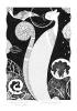 Mrukot  (18x26 cm, rysunek tuszem)
