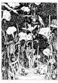 Trawy_02  (16x23 cm, rysunek tuszem)