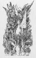 Trawy_20  (15x20 cm, rysunek tuszem)